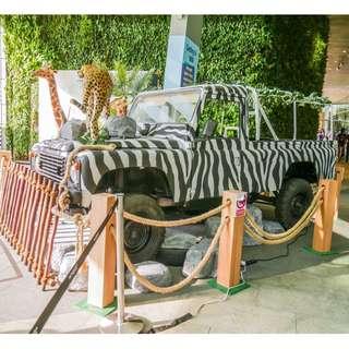 Safari Jeep for Rent!