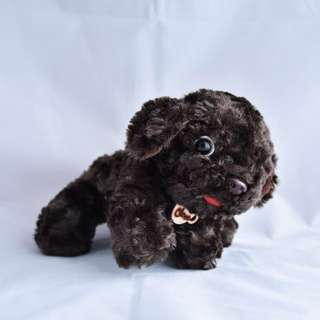 🆕 Choco puppy soft toy