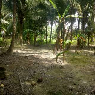 600 square meters lot for sale located at Alcantara Cebu