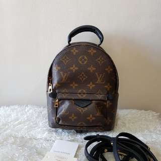 Authentic Louis Vuitton Palm Spring Mini Backpack Bag