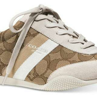 Coach kelson outline signature suede sneakers