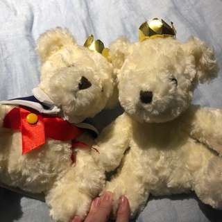 Pair Teddy Bear stuffed toy
