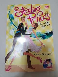 Novel Stealing Princes