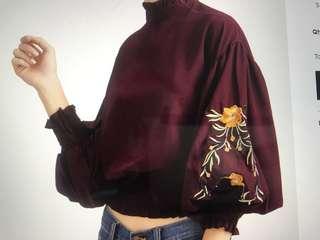 Embroidery Lantern Sleeve Shirred Hem Blouse