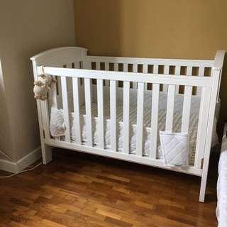 2014 Boori Cot Bed, Mattress, Bedsheets, mattress protector and bumper - First owner