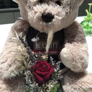 Hershey's Bear