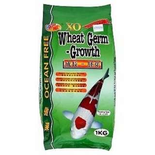 Ocean Free XO Wheat Germ-Growth