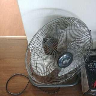 booney fan