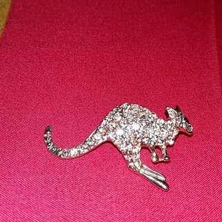 Bross kangguru (Australia)