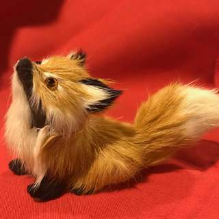 Tiny furry fox for display
