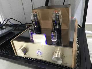 Hybrid Tube Amp (w upgraded French & Russian tubes)
