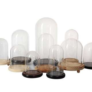 Glass domes large display case glass display preserved rose