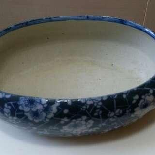 水仙盤 藍色