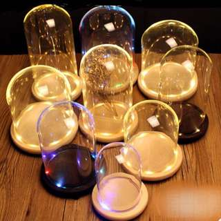 Fairy lights glass dome led lights preserved rose