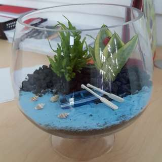 Terrarium (little seaside garden)