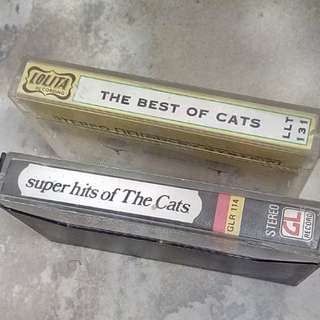 Kaset the cats 75K dpt 2