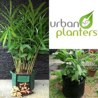 Rhizome Planterbag