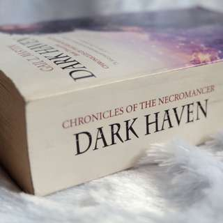 Dark Haven by Gail Z. Martin