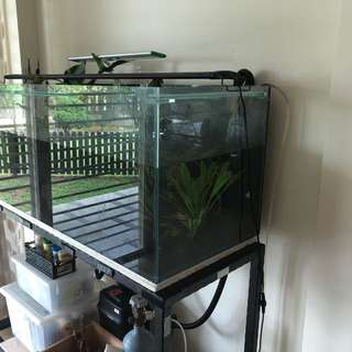 Fish tank + stand + filter + light + CO2 tank