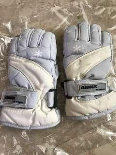 Winter/Ski Gloves