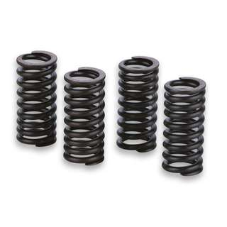 MALOSSI 4 SPRINGS for ENGINE VALVES
