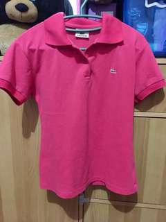 Auth lacoste polo