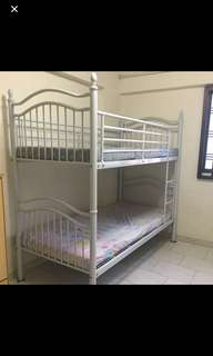 Common room for rent, max 3pax at Serangoon north ave 1, Blk 147