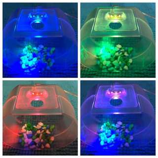 LED Rainbow Betta Fish Tank USB cable powered #HUAT50SALE