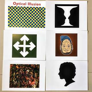 Optical Illusions Flash cards / Shichida Heguru Right Brain Training Flashcards