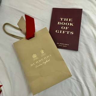 Genuine Burberry Paper Bag Medium