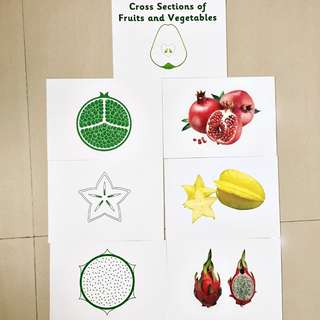 Cross Section of Fruits and Vegetables flashcards /heguru and shichida
