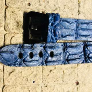 🚚 沛納海 24 鱷魚骨頭