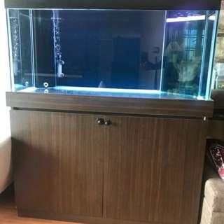 Fish tank 4x2x2