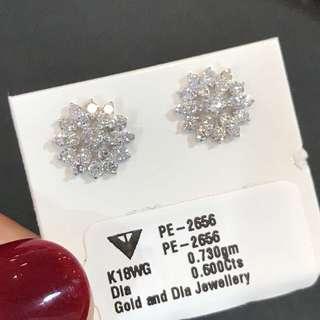 60份一對 鑽石耳環