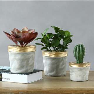 Artificial Cement Potted Plants