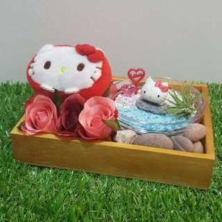 Sanrio Hello Kitty Plush Toy & Figurine Air Plant