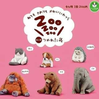 Zoo休眠動物園第三彈 刺蝟