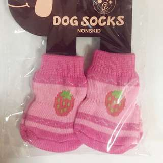 PETS SOCKS #09 STRAWBERRY(L)