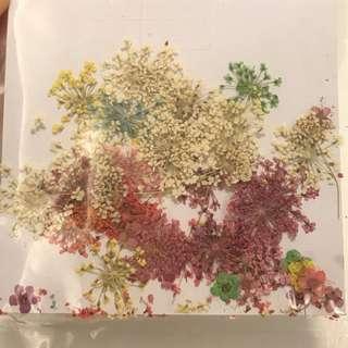 超平靚正!乾碎花材料 紅黃綠粉紅