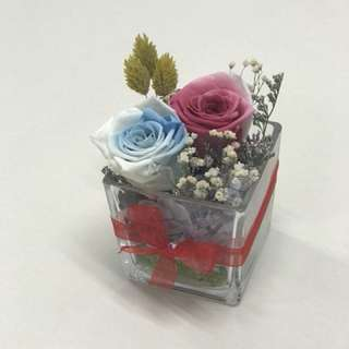 You & Me 2 (Preserved flower)
