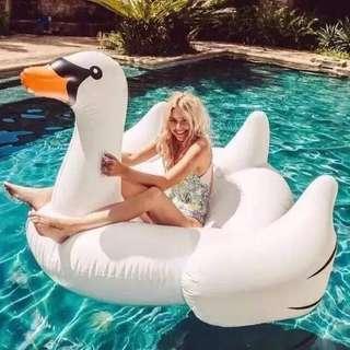 Giant Swan floater