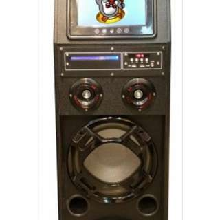 Portable Karaoke Amplifier for Rental