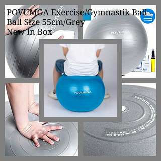 POVUMGA Exercise Ball Heavy Duty Anti-Burst Fitness-Birthing-Stability-Core-Pilates-Gym Balls for Pregnancy, Balance Ball for Desk Chair 55cm Silver Color with Hand Pump