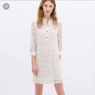 Zara Collared Lace Dress