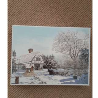 1000 Piece Jigsaw Puzzle - Winter Cottage(By Mouth & Foot painting artist)