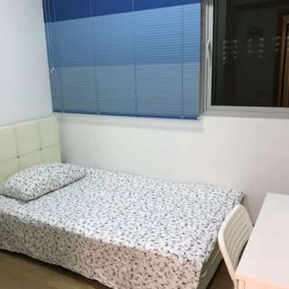 Bendemeer Road condo room for rent