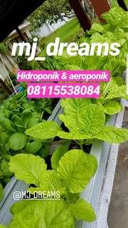 Hidroponik dan aeroponik ready .. fresh, berkwalitas dan harga murah