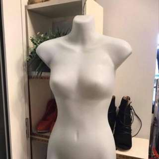 Mid section Mannequin