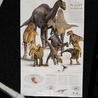 Dinosaur Infography National Geo