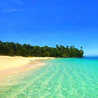 Siargao DAKU Island Lot FOR SALE